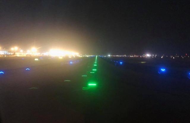 Máy bay không thể hạ cánh xuống Nội Bài vì nghi mèo chạy qua đường băng