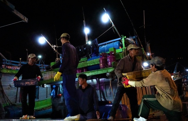 Trắng đêm mưu sinh ở cảng cá lớn nhất miền Trung