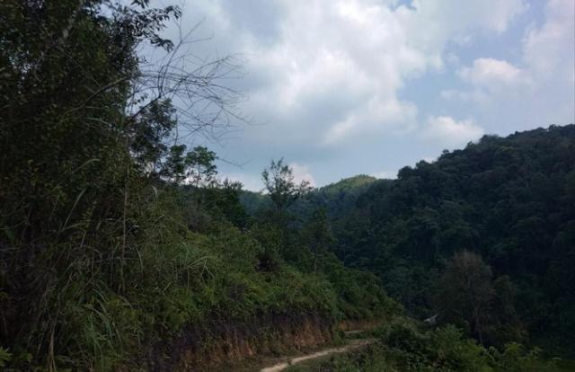 Lạng Sơn: Vì sao nguyên giám đốc văn phòng đăng ký đất đai huyện Gia Bình bị bắt?