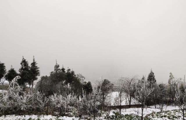 Chùm ảnh: Y Tý phủ một màu trắng xoá bởi băng tuyết