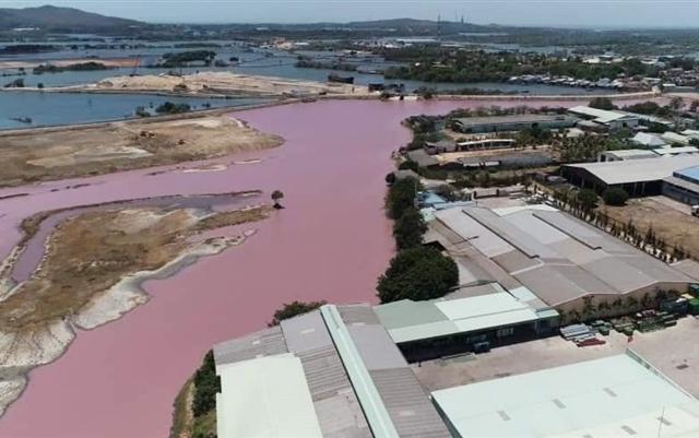 Bà Rịa - Vũng Tàu: Hồ chứa nước chuyển sang màu tím do ảnh hưởng trực tiếp từ nhà máy chế biến bột cá
