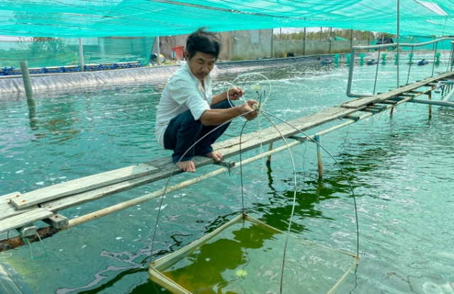 Nông dân thu tiền tỷ mỗi năm nhờ nuôi tôm công nghệ cao