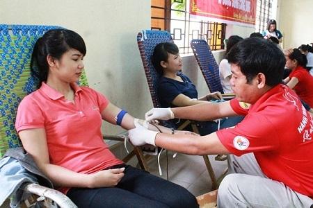 Bộ Giáo dục - Đào tạo  vận động hiến máu dịp Tết