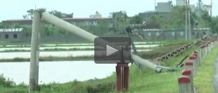 [Video] Hình ảnh thiệt hại do bão Mirinae gây ra tại Thái Bình