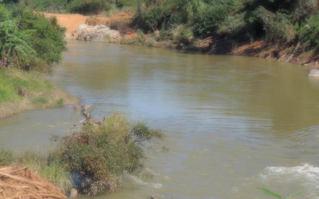 Kon Tum: Thủy điện Đức Nhân tích nước làm chết trâu, bò của dân
