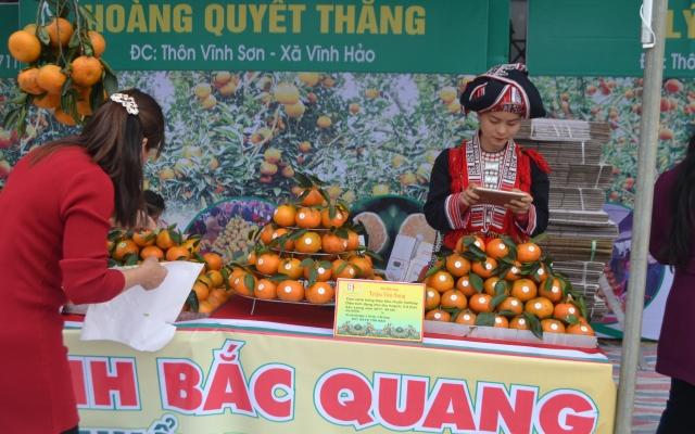Tỉnh Hà Giang khai mạc tuần lễ Cam sành huyện Bắc Quang