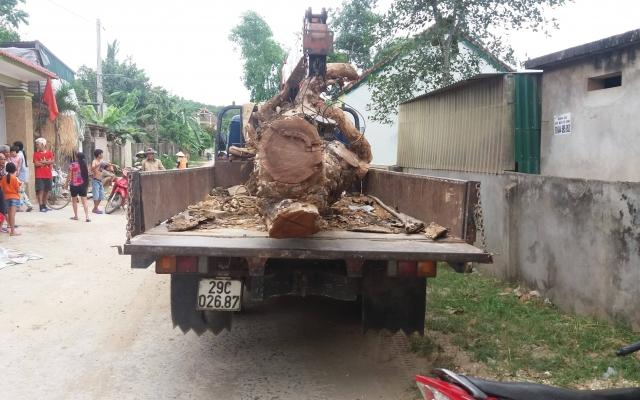 Liều lĩnh lái xe cẩu vào nhà dân để trộm cây mít lớn