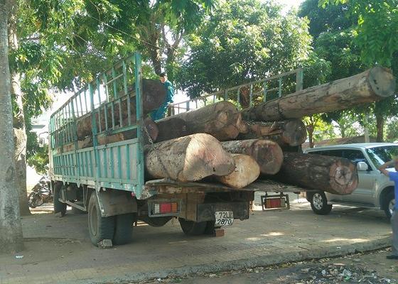 Kon Tum: Bắt giữ hơn 11 m3 gỗ không rõ nguồn gốc
