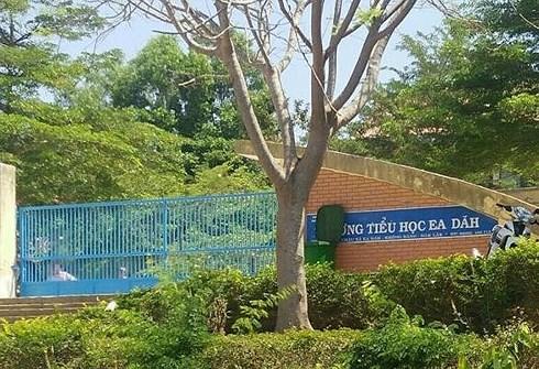 Giáo viên Tiểu học ở Đắk Lắk bị hành hung trước cổng trường