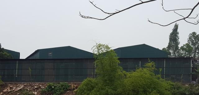 Hà Nội: Nhà xưởng rộng hàng trăm m2 lấn chiếm hành lang sông Đáy
