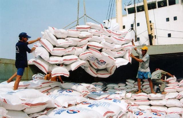 Xuất cấp gần 740 tấn gạo cho tỉnh Bình Định hỗ trợ người dân bị hạn hán