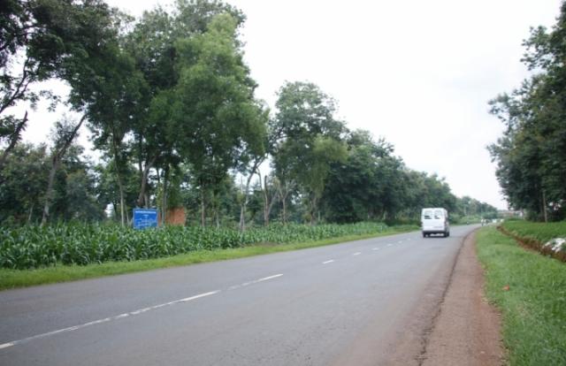 Giao chủ đầu tư đường Hồ Chí Minh đoạn tránh phía Đông TP Buôn Ma Thuột