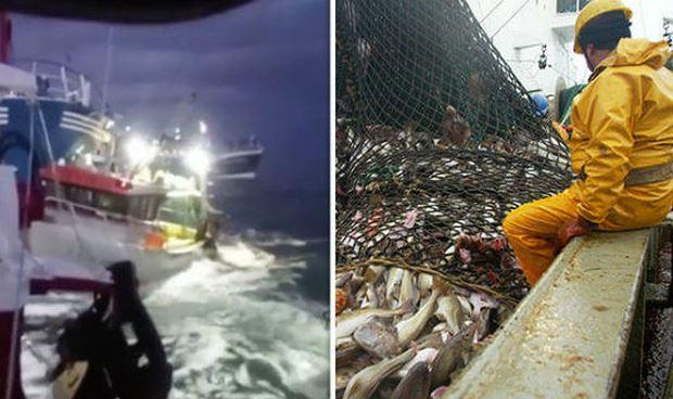 Hải chiến vì hải sản