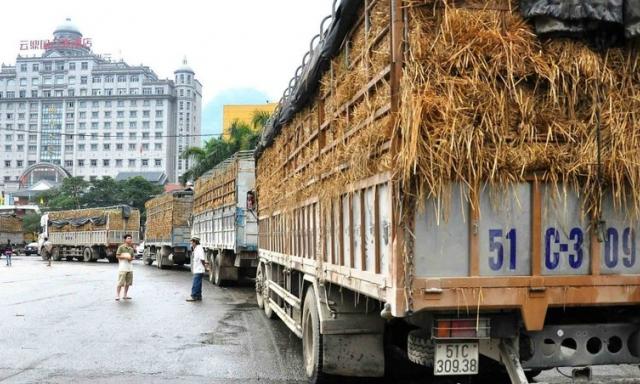 """Đã đến lúc bỏ suy nghĩ """"thị trường Trung Quốc là chợ biên giới"""""""