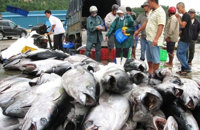 Trung Quốc miễn thuế hơn 30 mặt hàng thủy sản Việt Nam