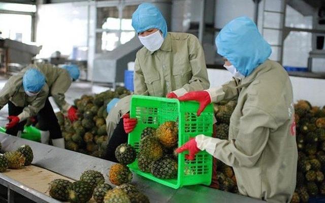 EVFTA thách thức nông sản Việt Nam