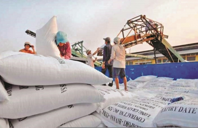 Gạo Việt Nam xuất khẩu đang có mức giá cao nhất thế giới