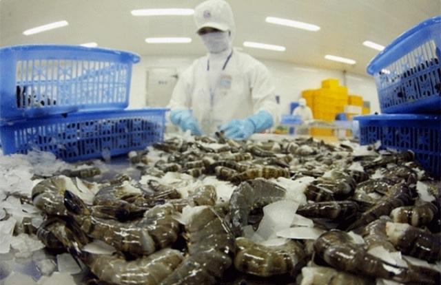 Nghiên cứu giải pháp hỗ trợ doanh nghiệp xuất khẩu tôm