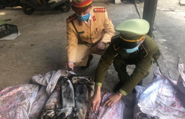 Quảng Ninh: Kiểm tra xe khách phát hiện hàng trăm kg mực ống bốc mùi hôi thối