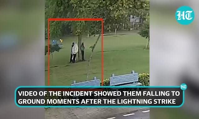 Clip: Kinh hoàng cảnh 4 người trú mưa dưới gốc cây bị sét đánh gục tại chỗ