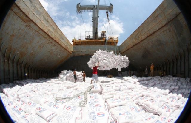 Kiến nghị bỏ điều kiện kinh doanh mua bán nợ, xuất khẩu gạo
