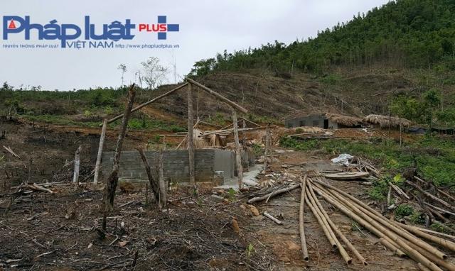 Yên Bái: Chuẩn bị đưa các đối tượng phá rừng đầu nguồn ra trước vành móng ngựa