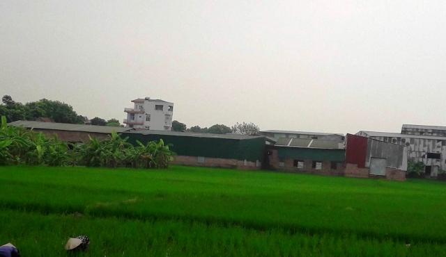 """Hoài Đức, Hà Nội: Hàng loạt nhà xưởng """"khủng"""" ngang nhiên mọc trên đất nông nghiệp"""