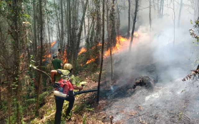 Hà Tĩnh: Hàng trăm người nỗ lực khống chế đám cháy rừng trên núi Nầm