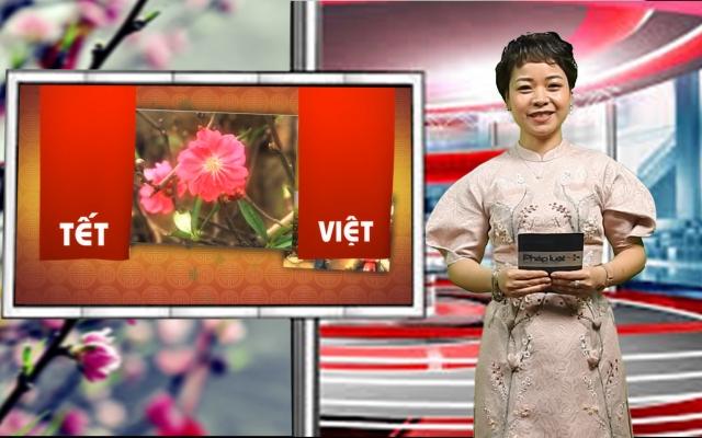 Bản tin Tết Việt 2020: Lễ chùa đầu xuân, miền tâm thức linh thiêng