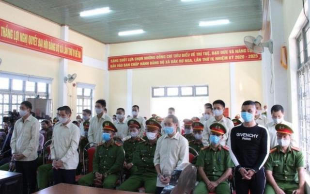 Kon Tum: Gần 100 năm tù dành nhóm khai thác gỗ trái phép ở Đắk Tô
