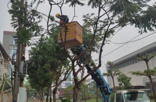 Điện lực Đà Nẵng sẵn sàng ứng phó với cơn bão Conson