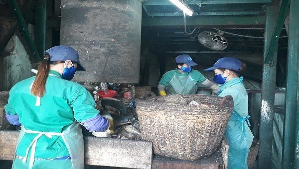 Thông tin 300 xác thai nhi chôn cất trong khuôn viên nhà máy rác