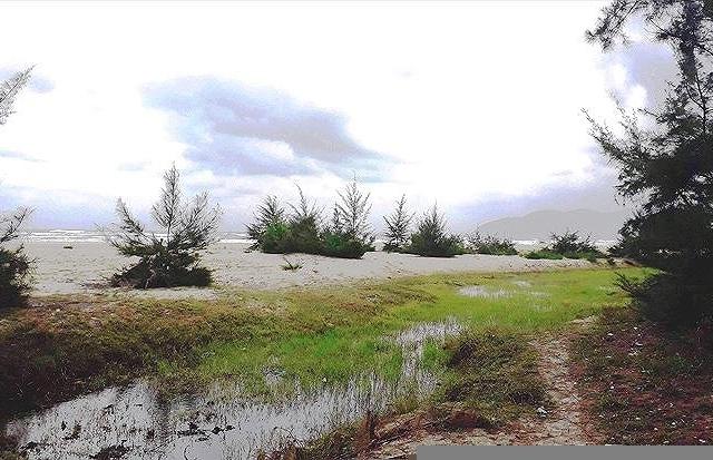TT-Huế: Làm rõ trách nhiệm vụ hàng chục lô đất 'vàng' ven biển cấp trái phép cho cán bộ