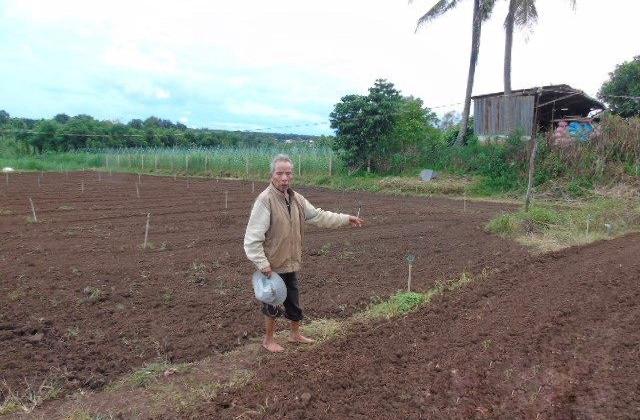 Gia Lai: Quyền sử dụng mảnh đất của cha già bất ngờ bị huỷ khi đưa con ra toà