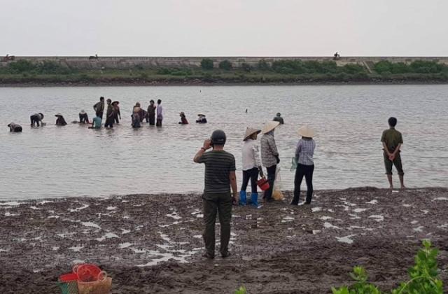 Chuyện lạ ở Nam Định: Hàng trăm người dân lao vào đánh bắt hải sản của một nông dân!