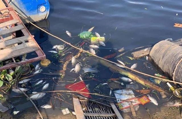Sông Cầu ô nhiễm, tỉnh Bắc Giang đề nghị Bộ TN&MT cùng tỉnh Bắc Ninh xử lý nghiêm hành vi xả thải