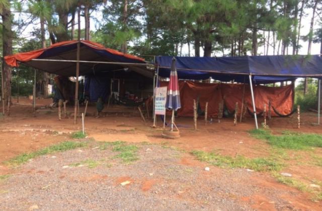 Đắk Lắk: Triệt xóa tụ điểm ma túy tại huyện Krông Buk