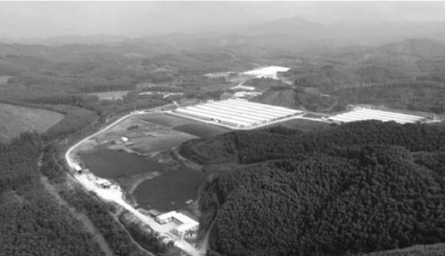 Bắc Giang: Tái phạm gây ô nhiễm, Công ty chăn nuôi Hoà Phát bị đình chỉ 3 tháng