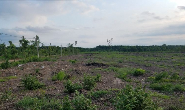 Trại giam Xuyên Mộc: Có hay không lợi ích nhóm trong việc cho thuê đất?