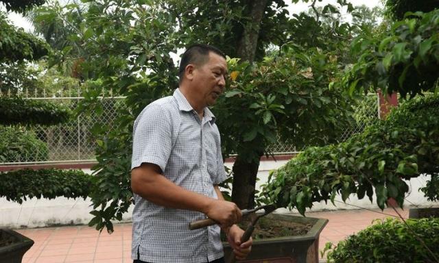 Lão nông trở thành tỷ phú nhờ chăm cây