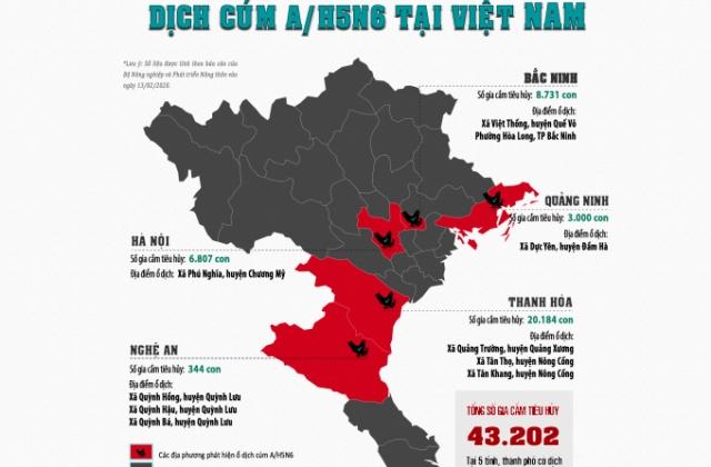 Infographics - Dịch cúm gia cầm A/H5N6 xuất hiện tại 5 tỉnh, thành phố của Việt Nam