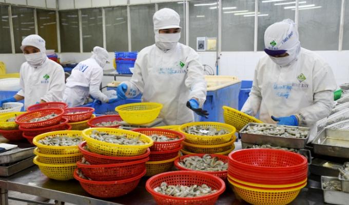 Cà Mau chủ động kết nối tiêu thụ nông, thủy sản, tìm đầu ra cho doanh nghiệp