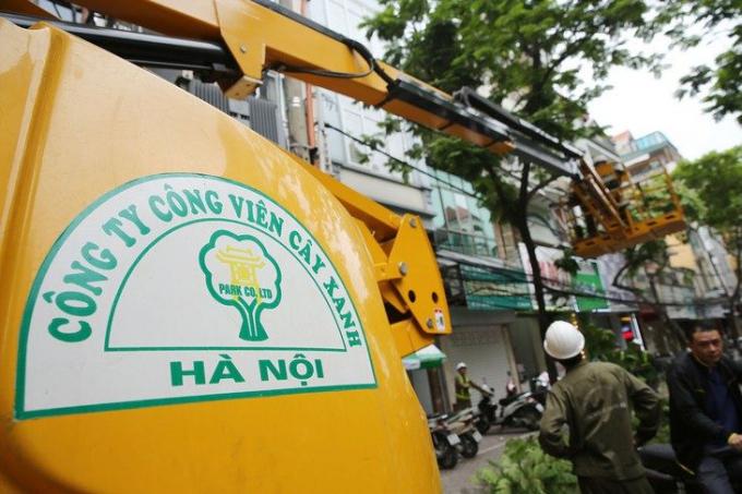 Công ty Cây xanh Hà Nội trúng loạt gói thầu lớn tại Sở Xây dựng Hà Nội, giá tiết kiệm siêu thấp